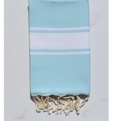 Plate bleu azurin clair