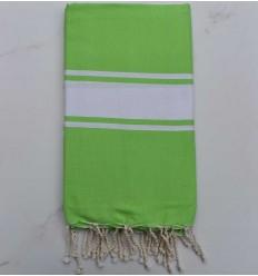 beach towel flat green flash